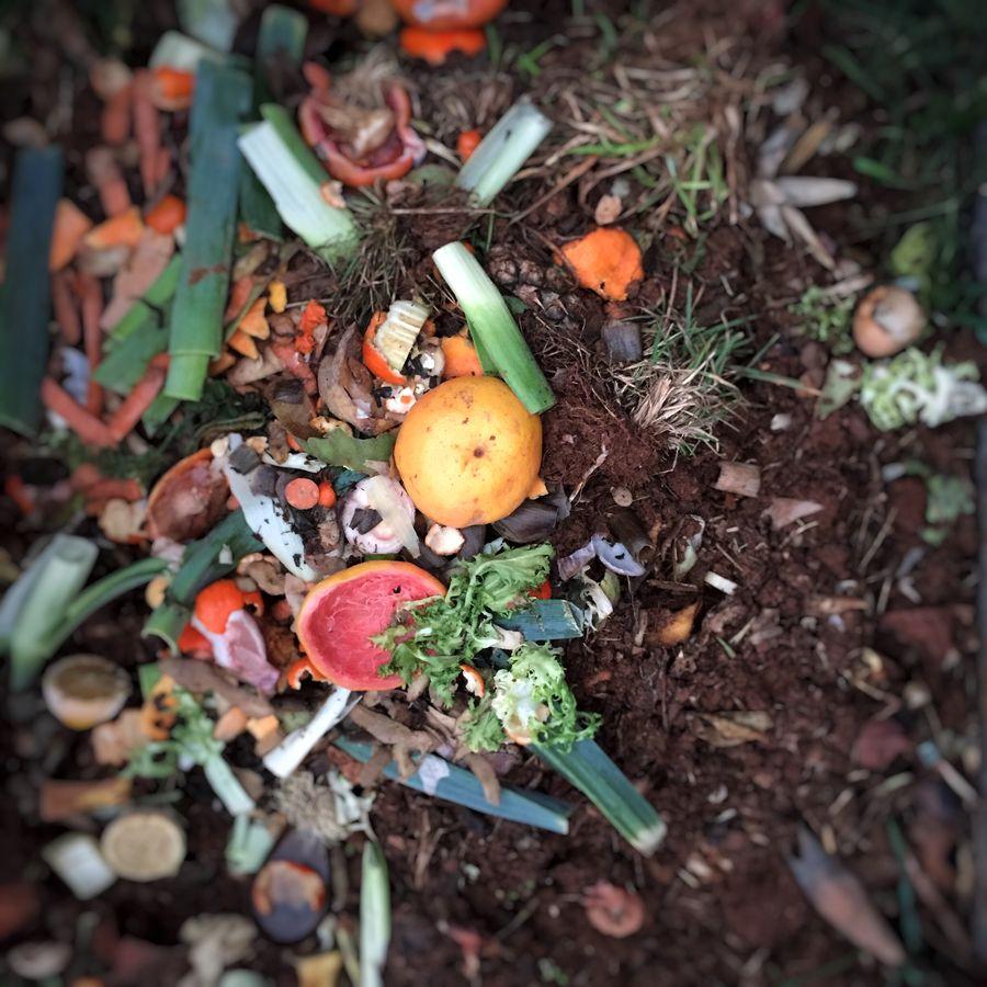 fruits légumes compost