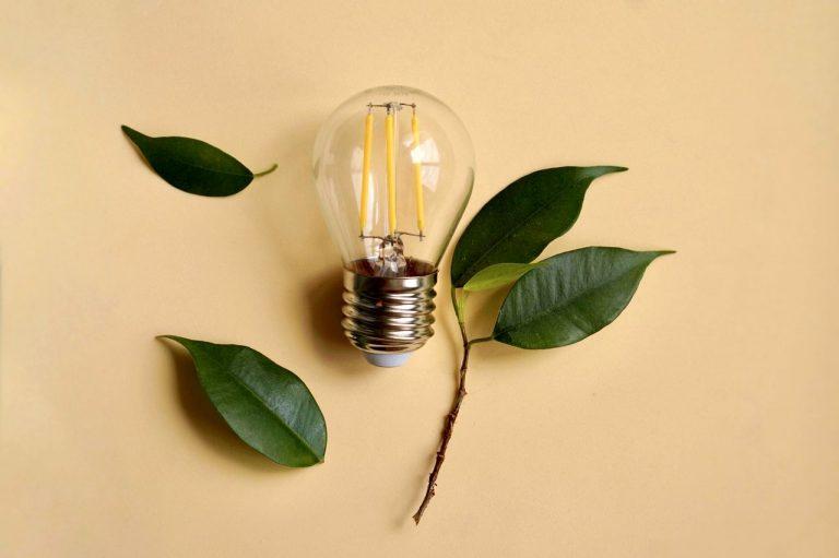 éclairage écologique
